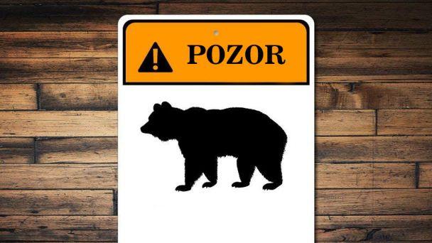 Oznam o výskyte medveďa hnedého v susednej obci